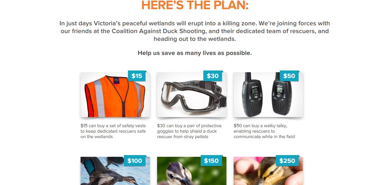 Animals Australia anti duck shooting donations